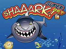 Играть в казино на деньги в автомат А-а-акула – Суперставка