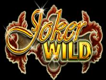 В казино на деньги Дикий Джокер
